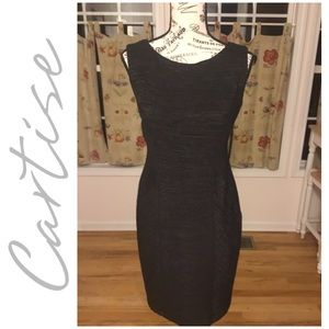 CARTISE Dress Black Sleeveless Metallic Shimmer
